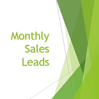 Local Monthly Sales Leads